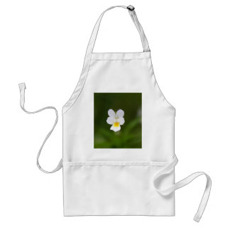 Flower of a wild field pansy adult apron