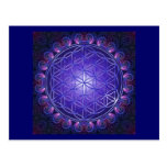 FLOWER OF LIFE / Blume des Lebens Mandala I Square Postcard