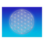 Flower of Life - Dolphin Energy Poster