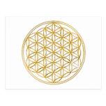 FLOWER OF LIFE - gold Postcard