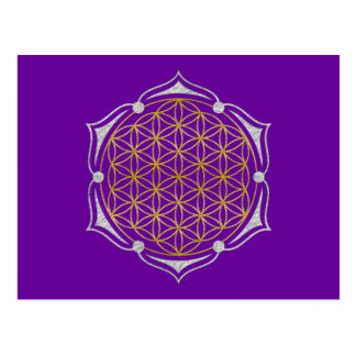 Flower Of Life - Lotus gold silver Postcard