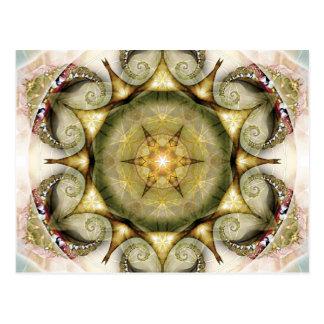 Flower of Life Mandala 19 Cards Post Card