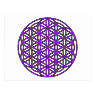 Flower of Life Purple Postcard
