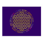 Flower Of Life with Rules Of Life Postcard