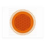 Flower Of Live / sunny design Post Card