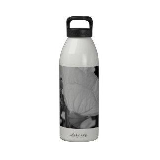 Flower of Love B/W Drinking Bottles