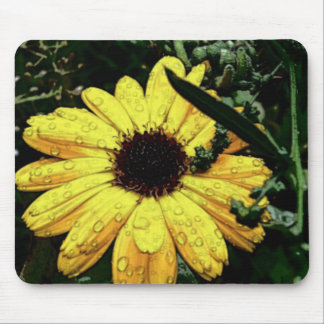 Flower of Love Mouse Pads
