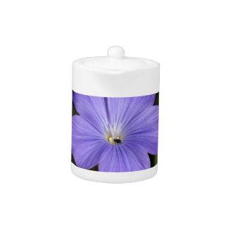 Flower of perennial or blue flax teapot