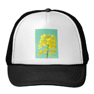 Flower of rape trucker hat