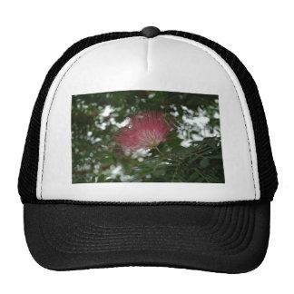 Flower of Rosa Thistle Trucker Hat