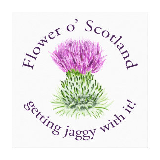 Flower of Scotland - getting jaggy with it! Canvas Print