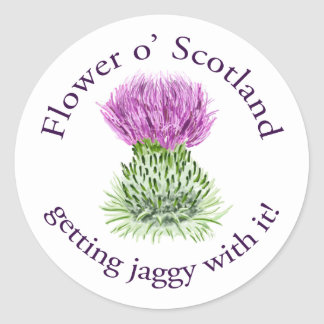 Flower of Scotland - getting jaggy with it! Classic Round Sticker