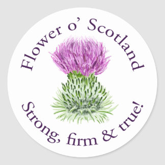 Flower of Scotland. Strong, firm and true! Classic Round Sticker