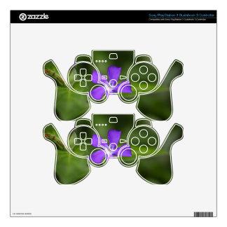 Flower of the bigleaf periwinkle (Vinca major). Skin For PS3 Controller