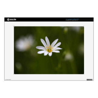 Flower of the  greater stitchwort laptop skins