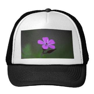 Flower of the Herb-Robert, Geranium robertianum. Trucker Hat