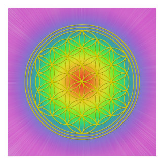 Flower of the life Chakra 1 Poster