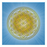 Flower of the life print