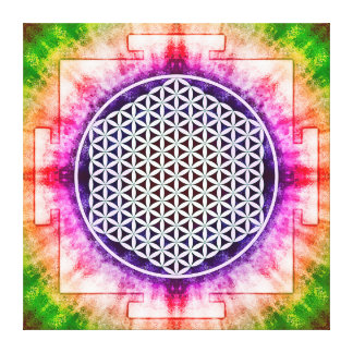 Flower of the life - Yantra Canvas Print