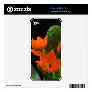 Flower of the Star of Bethlehem Plant Skin For iPhone 4S