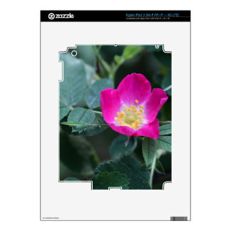 Flower of the wild Soft Downy Rose Skins For iPad 3