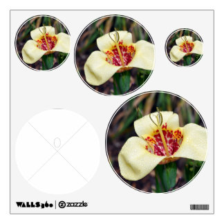 Flower of Tigridia pavonia or jockey's cap lily Wall Sticker
