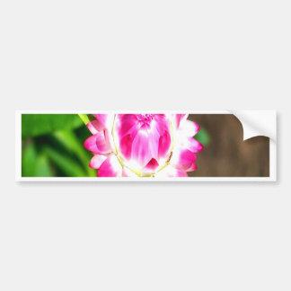 flower open heart for love bumper sticker