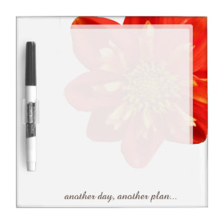 Flower Orange Dahlia any Text on any Color Dry-Erase Board