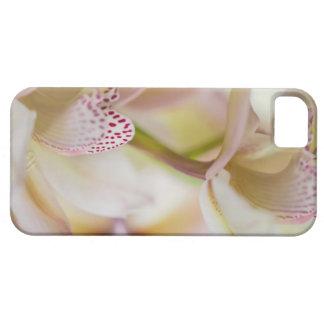 Flower Orchid iPhone SE/5/5s Case