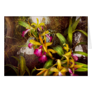 Flower - Orchid - There's something about orchids Card