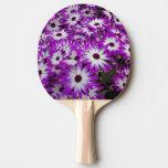 Flower pattern, Kuekenhof Gardens, Lisse, Ping-Pong Paddle