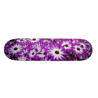 Flower pattern, Kuekenhof Gardens, Lisse, Skateboard