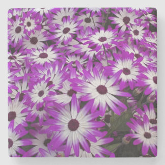 Flower pattern, Kuekenhof Gardens, Lisse, Stone Coaster