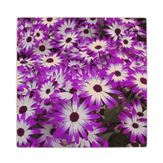 Flower pattern, Kuekenhof Gardens, Lisse, Wood Coaster