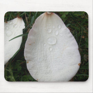 Flower Petal with Dew Drop Mouse Pad