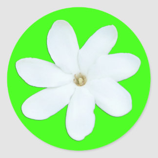 Flower Petals Sticker