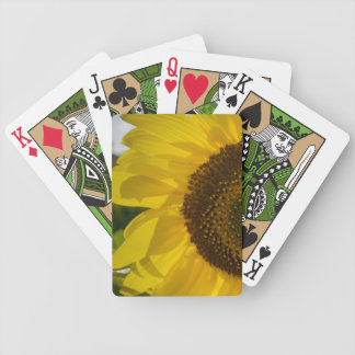 Flower Photo Bicycle Playing Cards