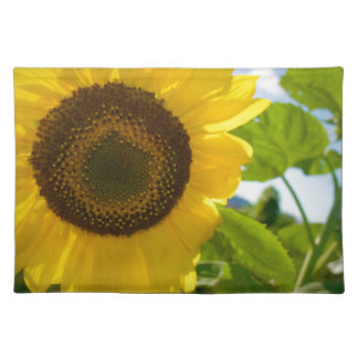 Flower Photo Cloth Placemat