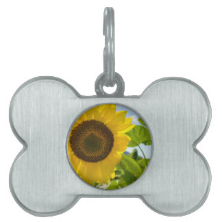 Flower Photo Pet Tags