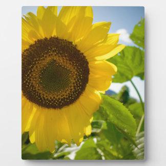 Flower Photo Plaque