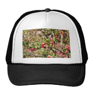 Flower Photo Trucker Hat