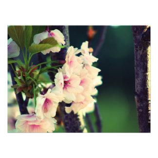Flower Photo Print