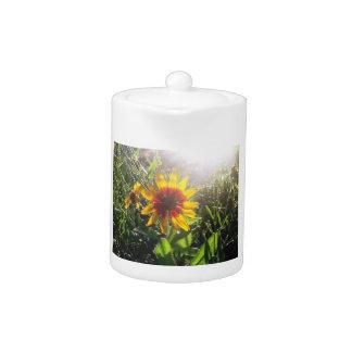 Flower picture teapot