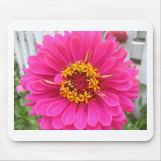 flower,pink state fair zinnia mouse pad