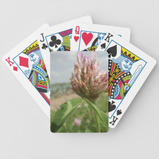 flower poker deck