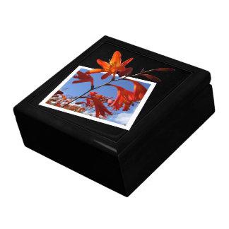 Flower Pop Out Art Gift Box