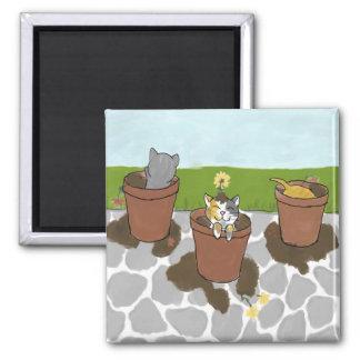Flower Pot Kittens Magnet