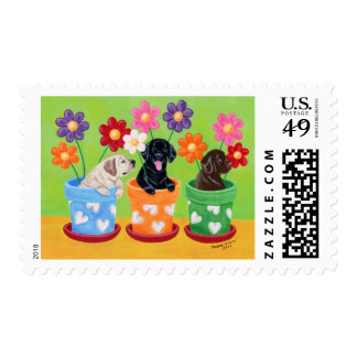 Flower Pot Labrador Puppies Postage Stamps