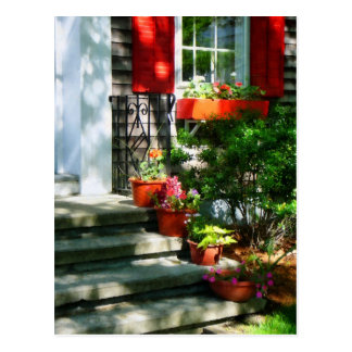 Flower Pots and Red Shutters Post Cards