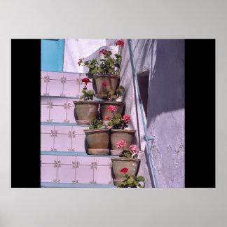 Flower pots, Izba, Spain Posters